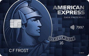 Blue Cash Preferred Credit Card
